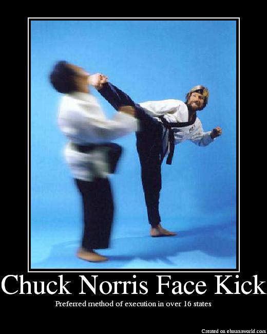 ChuckNorrisFaceKick