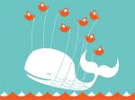 Fraudes del 2.0: los twittstar que actúan como ballenas