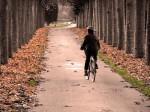Ciclismo urbano III: decálogo de una circulación amable