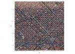 Geolocalizar en el mapa una manifestación gracias a twitter, el caso del #24N en Barcelona