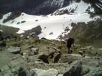 Ascensión al Montardo (2.833 metros): primeros pasos en el pirineo aranés